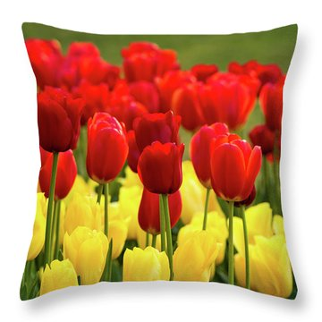 Throw Pillow featuring the photograph Red And Yellow Tulips by Mary Jo Allen