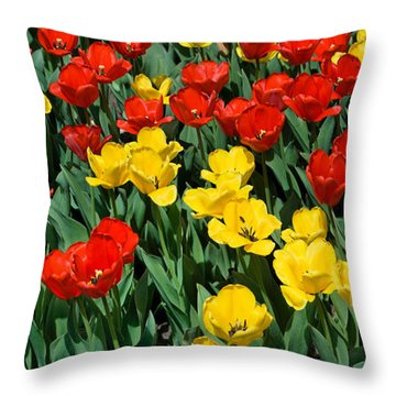 Red And Yellow Tulips  Naperville Illinois Throw Pillow