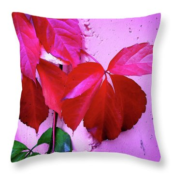 Red Autumnal Leaves And Purple Wall Throw Pillow