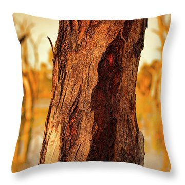 Throw Pillow featuring the photograph Red Bark by Douglas Barnard