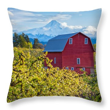 Throw Pillow featuring the photograph Red Barn And Mt Hood by Patricia Davidson