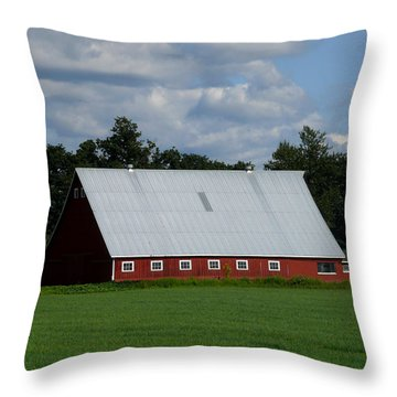 Red Barn And Silo Throw Pillow by John Bushnell