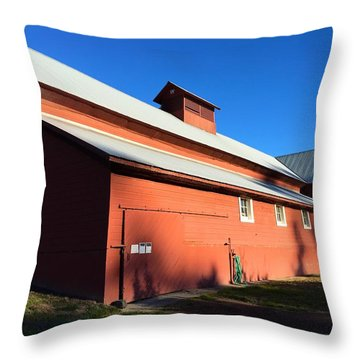 Red Barn, Blue Sky Throw Pillow
