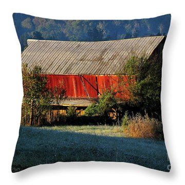 Red Barn Throw Pillow by Douglas Stucky