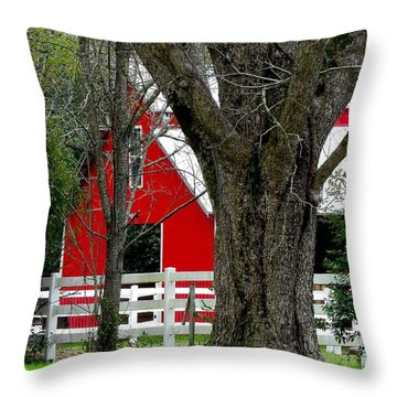 Throw Pillow featuring the photograph Red Barn In Back by Laura Ragland