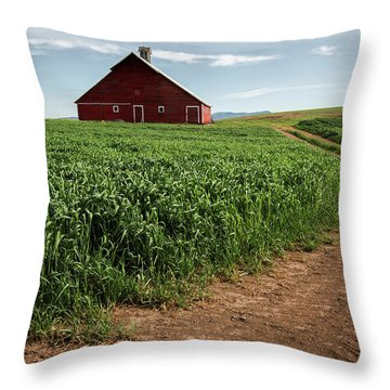 Red Barn In Green Field Throw Pillow