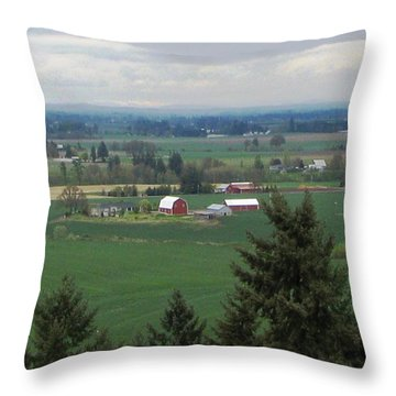 Red Barn Throw Pillow by Judyann Matthews