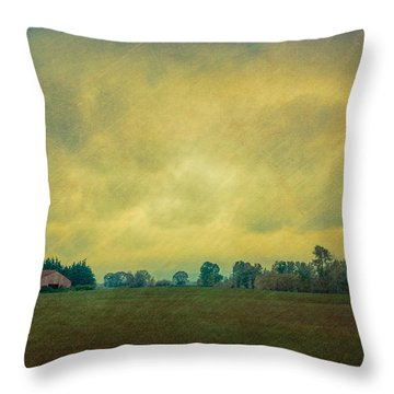 Red Barn Under Stormy Skies Throw Pillow by Don Schwartz