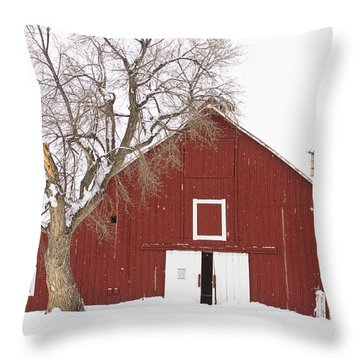Red Barn Winter Country Landscape Throw Pillow by James BO  Insogna