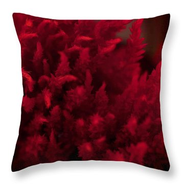Red Beauty Throw Pillow by Cherie Duran