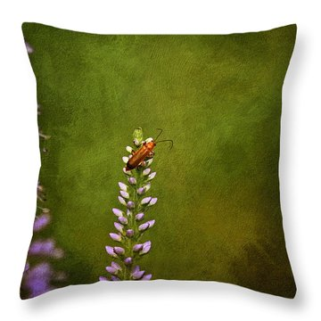 Red Beetle On Purple Blazing Star Throw Pillow