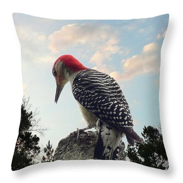 Red-bellied Woodpecker - Tree Top Throw Pillow by Al Powell Photography USA