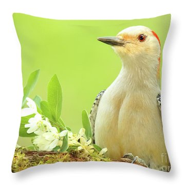 Red-bellied Woodpecker Among Flowers Throw Pillow by Max Allen