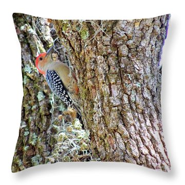 Red-bellied Woodpecker By Bill Holkham Throw Pillow by Bill Holkham
