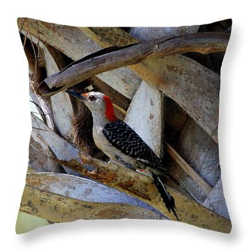 Throw Pillow featuring the photograph Red-bellied Woodpecker Hides On A Cabbage Palm by Barbara Bowen