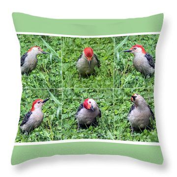 Red-bellied Woodpecker Posing In The Grass Throw Pillow