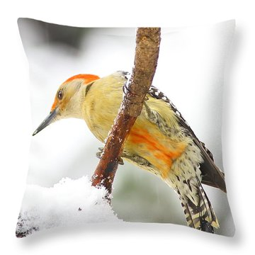 Red-bellied Woodpecker With Snow Throw Pillow