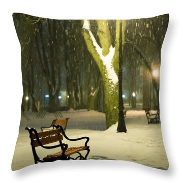 Parks Throw Pillows