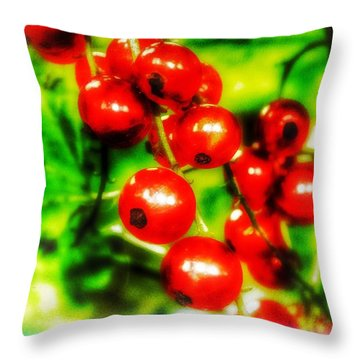 Throw Pillow featuring the photograph Red Berries by Isabella F Abbie Shores FRSA