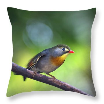 Red Billed Leiothrix Throw Pillow