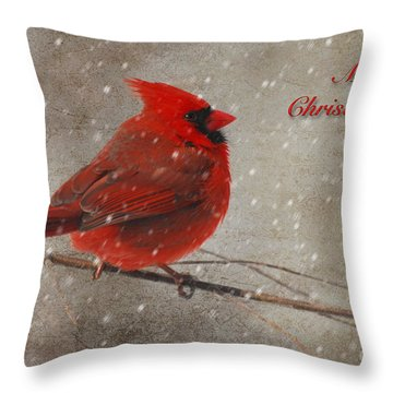 Red Bird In Snow Christmas Card Throw Pillow