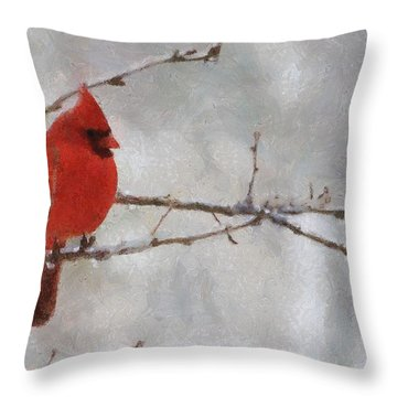 Red Bird Of Winter Throw Pillow