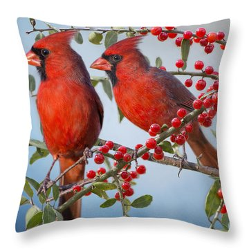 Red Birds In Red Berries Throw Pillow