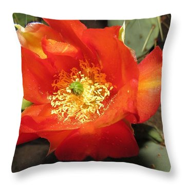 Red Bloom 1 - Prickly Pear Cactus Throw Pillow