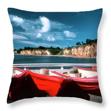 Red Boat Diaries Throw Pillow