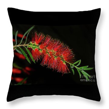 Throw Pillow featuring the photograph Red Bottlebrush By Kaye Menner by Kaye Menner