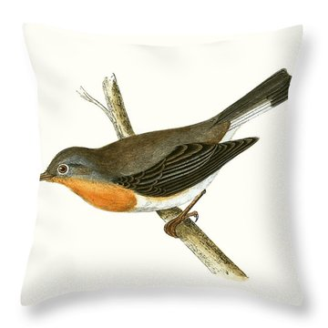 Red Breasted Flycatcher Throw Pillow by English School