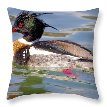 Red-breasted Merganser Throw Pillow