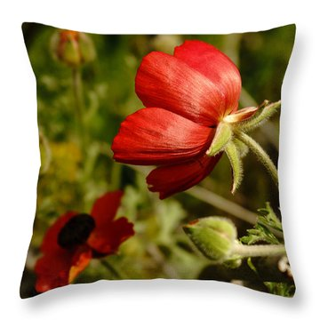 Red Buttercup Throw Pillow