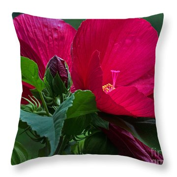 Red By The Pond Throw Pillow