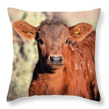 Red Calf Throw Pillow