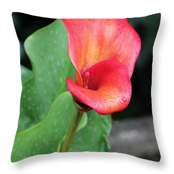 Red Calla Lily Throw Pillow