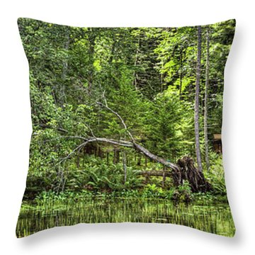 Throw Pillow featuring the photograph Red Canoe Panorama by David Patterson