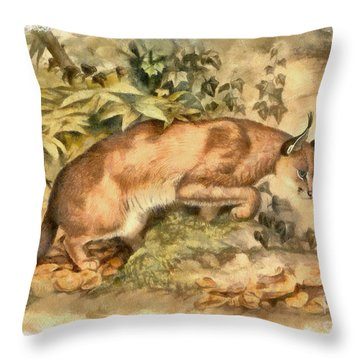 Red Caracal Throw Pillow by Sergey Lukashin