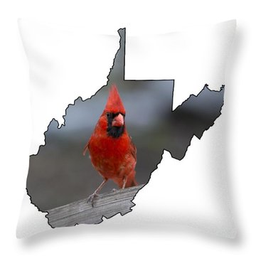 Red Cardinal Looking For Food Throw Pillow