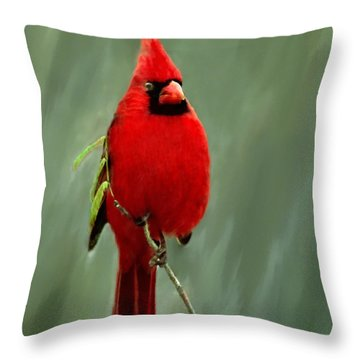 Red Cardinal Painting Throw Pillow