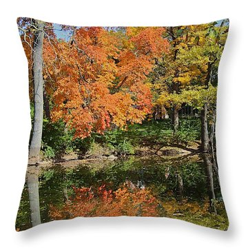 Red Cedar Banks Throw Pillow