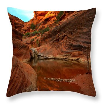Red Cliffs Reflections Throw Pillow