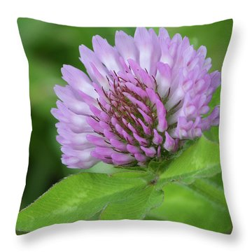 Red Clover Throw Pillow