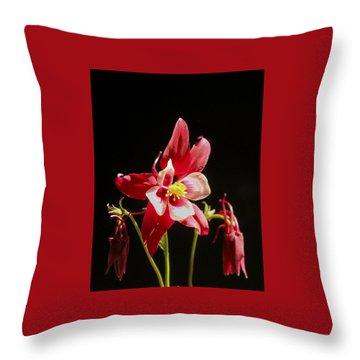 Red Columbine Flower Throw Pillow by Christina Lihani