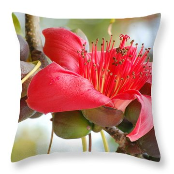 Red Cotton Tree 2 Throw Pillow