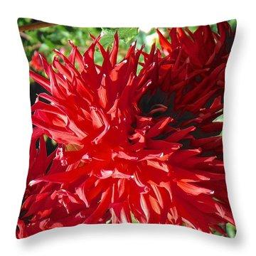 Red Dahlia Pizazz  Throw Pillow