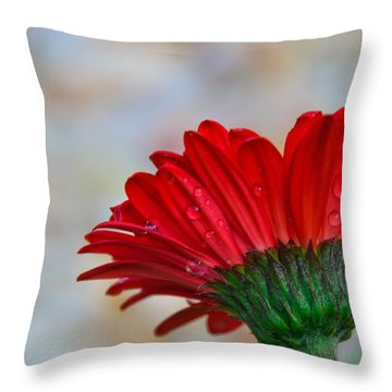 Red Daisy  Throw Pillow