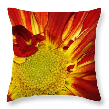 Red Daisy Throw Pillow by Sabrina L Ryan