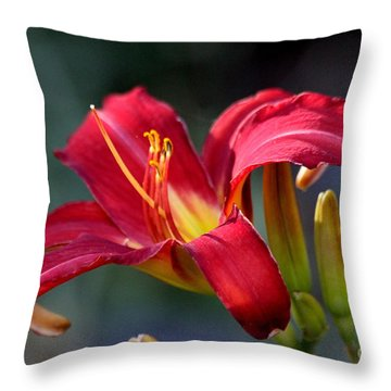 Red Day Lily  Throw Pillow by Irina Hays