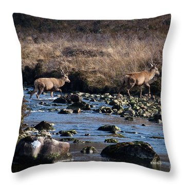 Stags River Crossing Throw Pillow